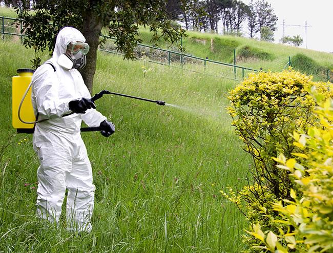 curso de usuario profesinoal de productos fitosanitarios